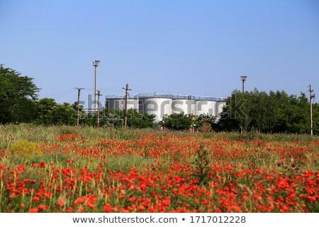 Gyár mezők nagy kémény vízszintes kép Stock fotó © Koufax73