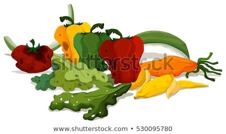 Zgniły warzyw piętrze ilustracja tle sztuki Zdjęcia stock © bluering