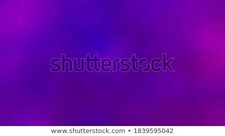 Púrpura resumen bajo polígono estilo ilustración Foto stock © patrimonio