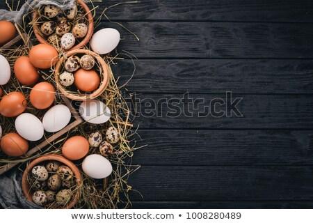 quail and chicken egg stock photo © erierika