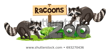 Zoo podpisania ilustracja sztuki zabawy tropikalnych Zdjęcia stock © bluering