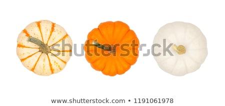 Piccolo strisce zucche tre bianco vegetali Foto d'archivio © Digifoodstock