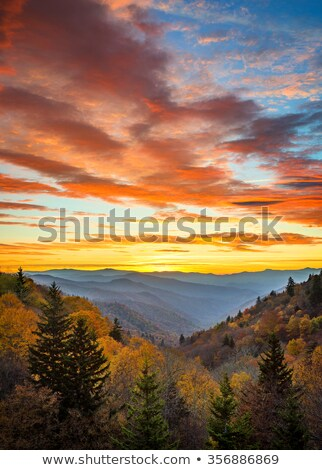 Sunrise over Great Smoky Mountains at Peak of Autumn Color Stock photo © GreenStock