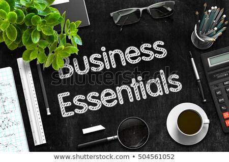 Business Essentials on Black Chalkboard. 3D Rendering. Stock photo © tashatuvango