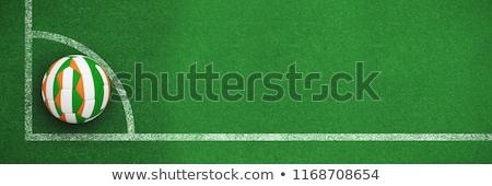 Берег · Слоновой · Кости · мяча · футбольным · мячом · флаг · Футбол · спорт - Сток-фото © wavebreak_media