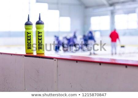 Ital üveg tábla jégkorong pálya fehér Stock fotó © fotoduki