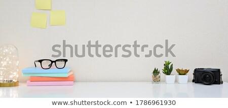 çatı katı ev ofis işyeri kitaplar kaktüs eski Stok fotoğraf © karandaev