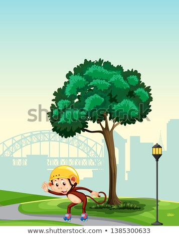 Monkey playing roller skate in the park Stock photo © colematt