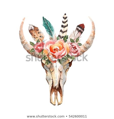 Stock photo: Bohemian style Bull Skull poster with set of feathers