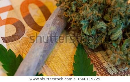 大麻 · 葉 · 孤立した · 緑 · 草 · 煙 - ストックフォト © artjazz
