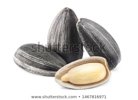 Ayçiçeği tohumları siyah doğa Stok fotoğraf © SwillSkill