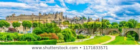 Cite de Carcassonne, France Stock photo © borisb17
