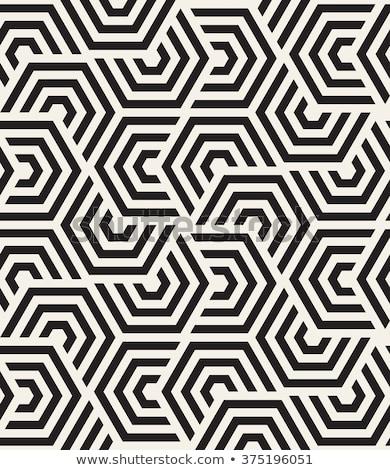 Geometryczny wektora bezszwowy Zdjęcia stock © samolevsky