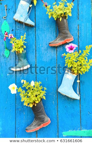 Flower bouquet in child boots Stock photo © ivonnewierink