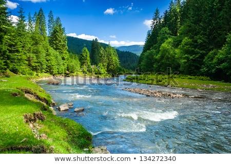 Yaz nehir manzara İtalya gökyüzü ağaç Stok fotoğraf © aletermi