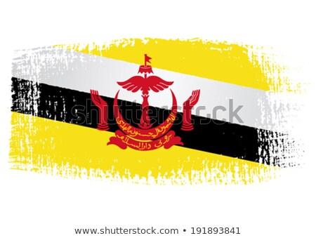 Brunei grunge bandera edad vintage textura grunge Foto stock © HypnoCreative