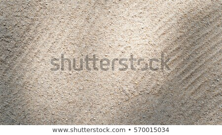 sand grooves Stock photo © smithore