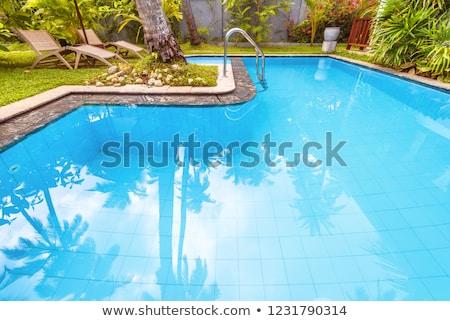 スイミングプール いい 手のひら 熱帯 シーン 自然 ストックフォト © Hasenonkel