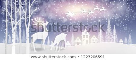 Herten vector poster ontwerp sneeuw bal Stockfoto © krabata