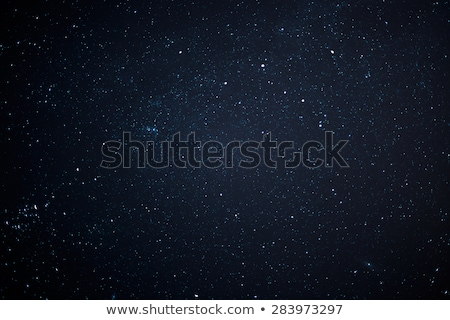 звездой · ярко · солнечной · вспышка - Сток-фото © arenacreative
