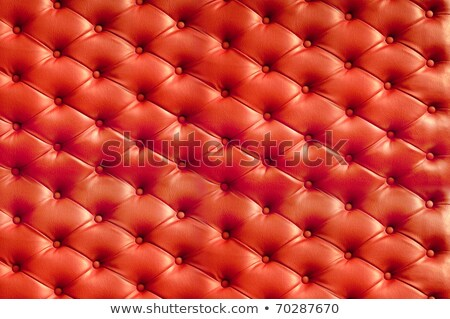 Red upholstery leather Stock photo © stoonn