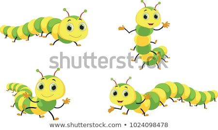 sorridente · pequeno · verme · desenho · animado · ilustração - foto stock © derocz
