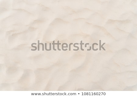 dunes of fine sand Stock photo © meinzahn