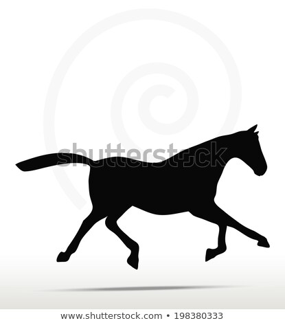 horse silhouette in Fast Trot position Stock photo © Istanbul2009