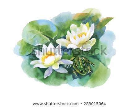 緑 · バグ · 花 · バラ · 春 - ストックフォト © trala