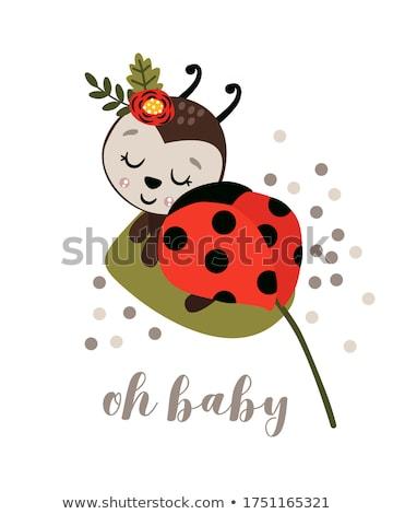Bebê joaninha ilustração natureza criança aniversário Foto stock © adrenalina