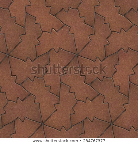 Brown Pavement in the form of Butterfly. Stock photo © tashatuvango