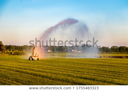 village near the water in holland Stock photo © compuinfoto