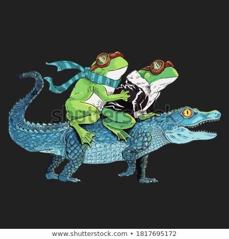 aligátor · fut · boldog · rajz · mosolyog - stock fotó © derocz