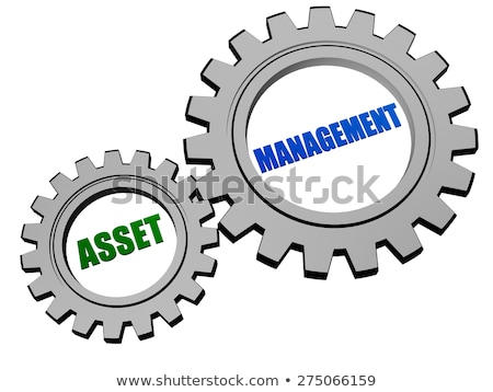 Asset Management In Silver Grey Gears Foto stock © marinini