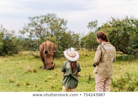 Szafari fehér zöld utazás portré Afrika Stock fotó © master1305