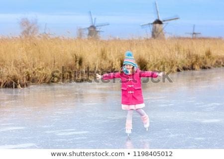 Pequeño río naturaleza Holanda árboles van Foto stock © compuinfoto