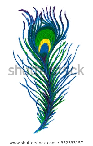 Colorful Peacock feather rangoli made of handmade soil colors. Stock photo © ziprashantzi