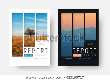 Blanco negro cubrir anual informe folleto volante Foto stock © ganpanjanee