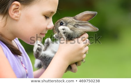 Kids in a Petting Zoo Stock photo © artisticco