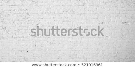 starych · cegły · gipsu · ściany · tekstury · miejskich - zdjęcia stock © meinzahn