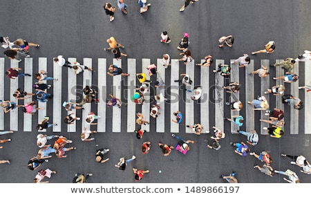 Walking on zebra. Stock photo © Fisher