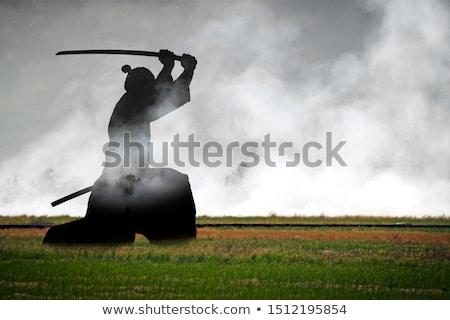 Japán csata szamuráj küzdősportok verekedés rajz Stock fotó © jossdiim