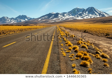 Sivatag tájkép Chile vad hegy kék Stock fotó © daboost
