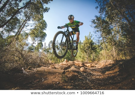 Mountain biker on cycling trail in woods Stock photo © blasbike