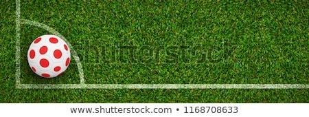 Futebol Japão cores campo de futebol plano fundo Foto stock © wavebreak_media