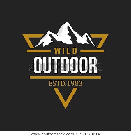 Stockfoto: Camping · badge · ontwerp · outdoor · avontuur · logo