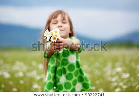 Cute ребенка девушки ромашка области Daisy Сток-фото © Lopolo