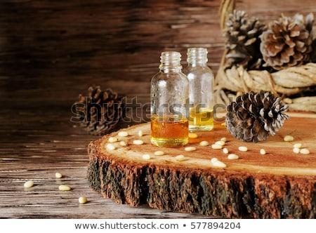 Cedar cones with nuts on stone table Stock photo © Valeriy