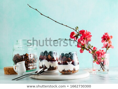 Desayuno cereales yogurt primavera flores arándanos Foto stock © madeleine_steinbach