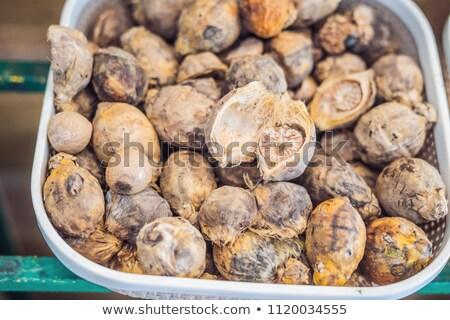 küçük · hindistan · cevizi · tohumları · ve · zemin · beyaz - stok fotoğraf © galitskaya